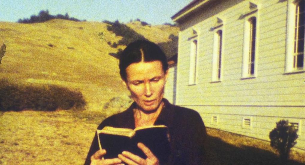 DOPPELGANGER, Peggy Ahwesh,