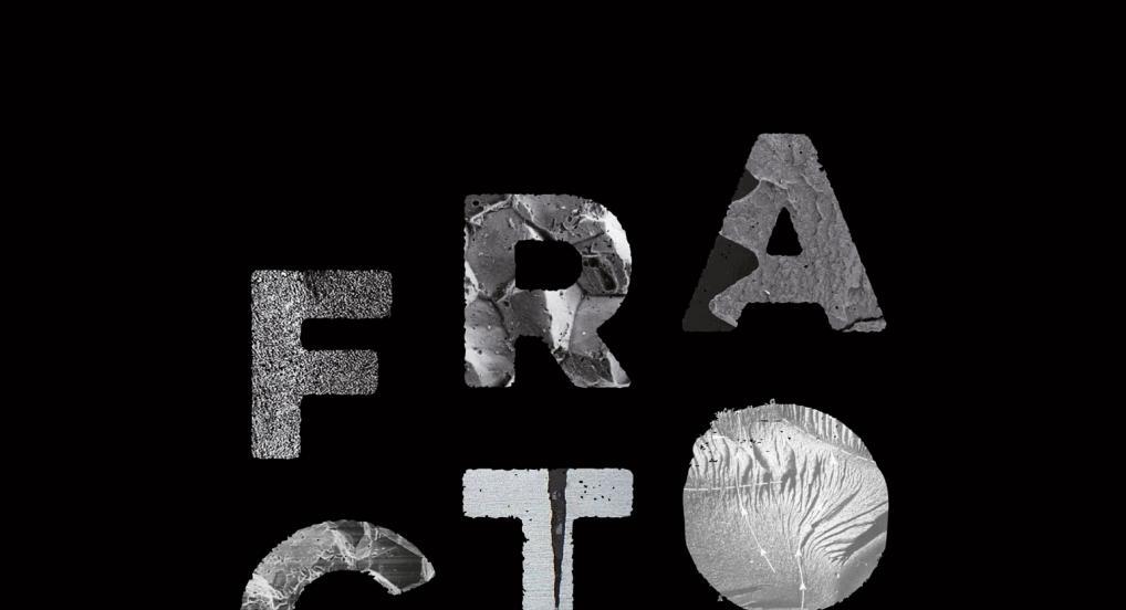 FRACTOFILMFESTIVAL