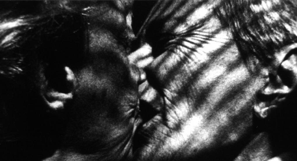 Nitrate Kisses (Barbara Hammer, 1992)