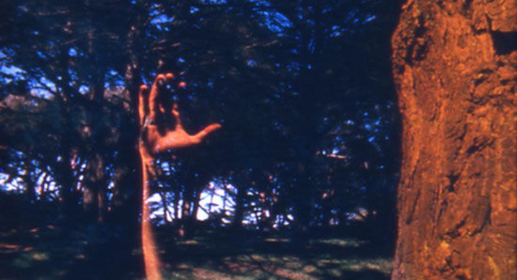 FFFTCM (Will Hindle, 1967)