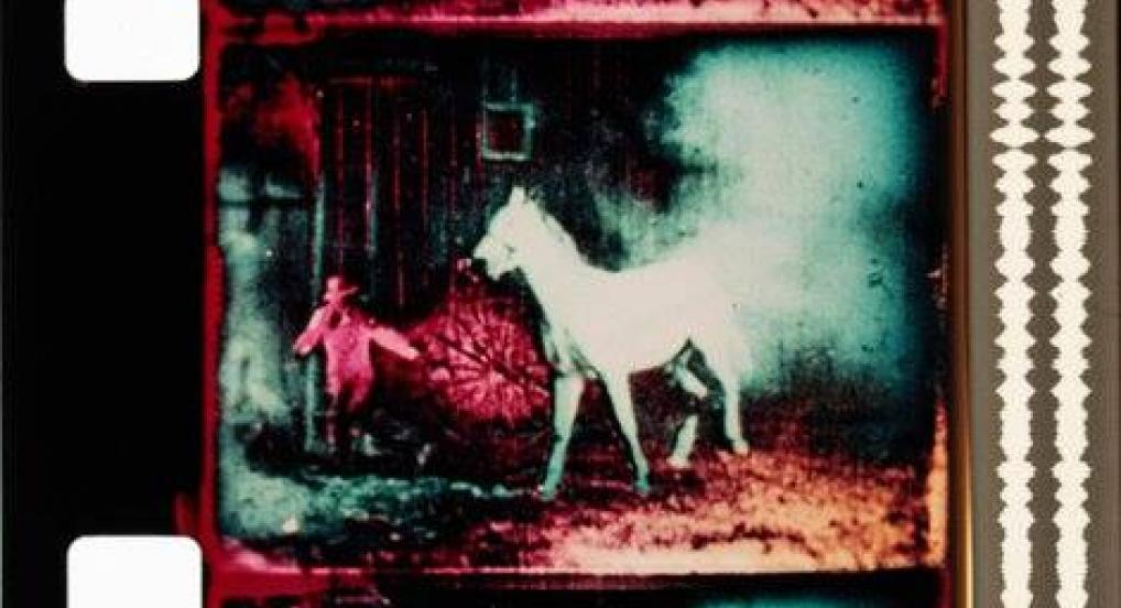 Berlin Horse (Malcolm Le Grice, 1970)