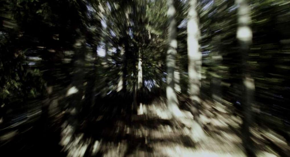 Vertigo Rush (Johann Lurf, 2007)