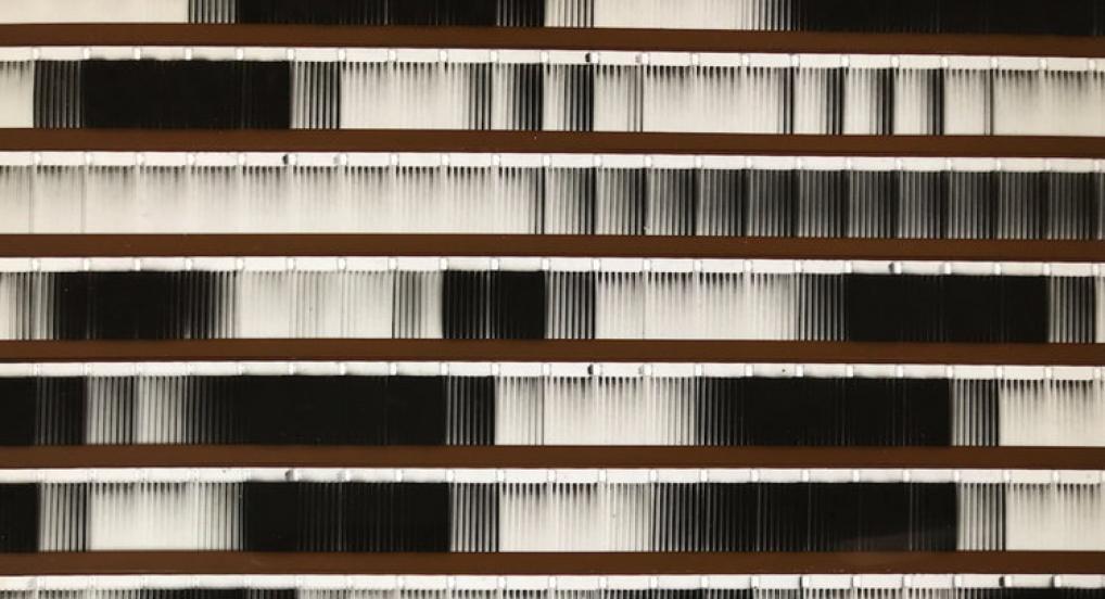 Between Lines (Susan Stein, 1978)