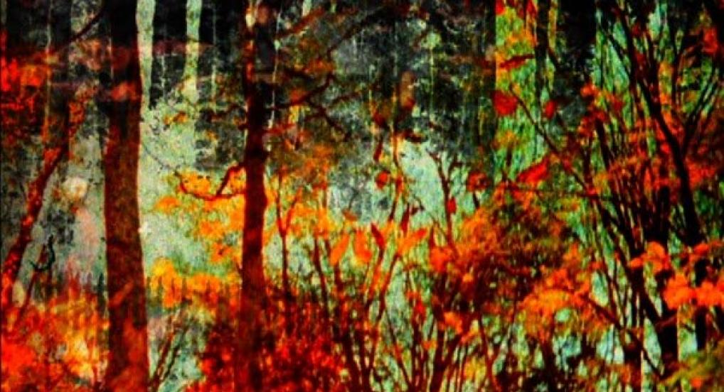 Spirits in Season (Stephen Broomer, 2013)