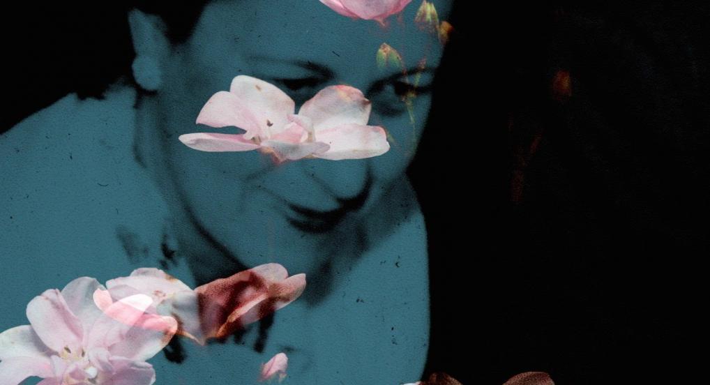 Flowers of the Sky (Janie Geiser, 2016)