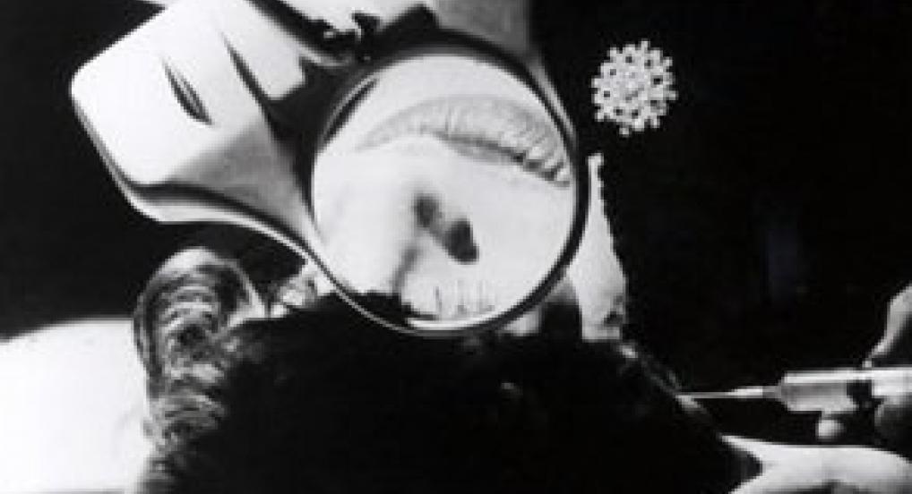 Hedy (Andy Warhol, 1966)