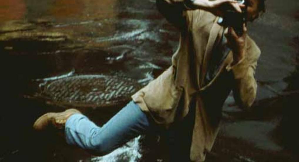 Jonas Mekas In Kodachrome Days (Ken Jacobs, 2009)