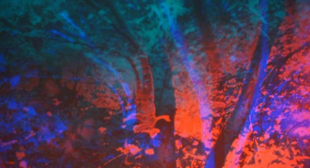 Luis Macías, Spectral Landscape