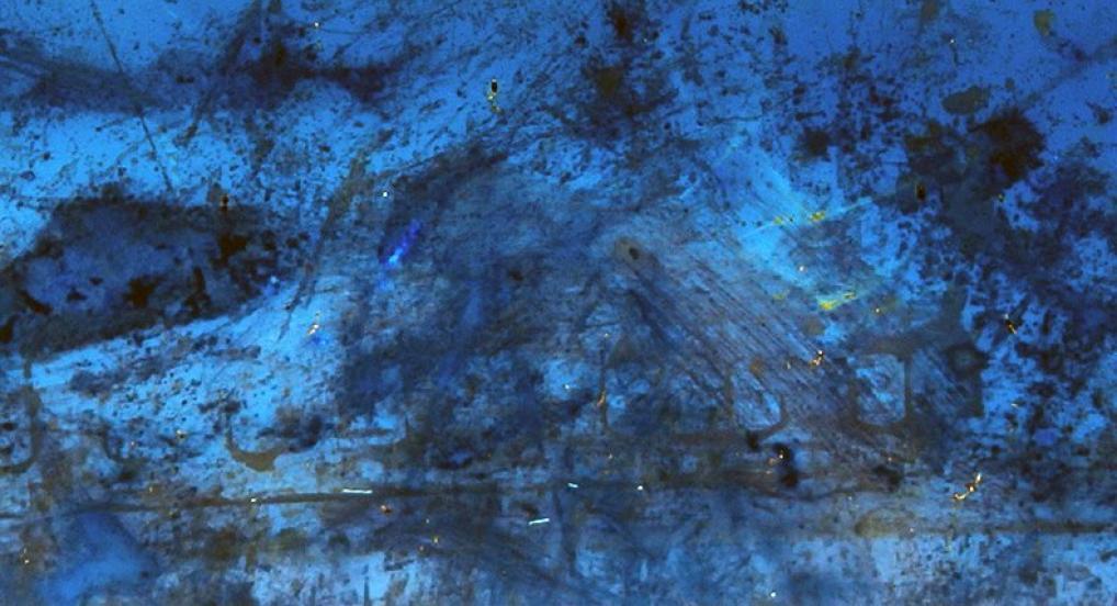 sound of a million insects, light of a thousand stars (Tomonari Nishikawa, 2014)