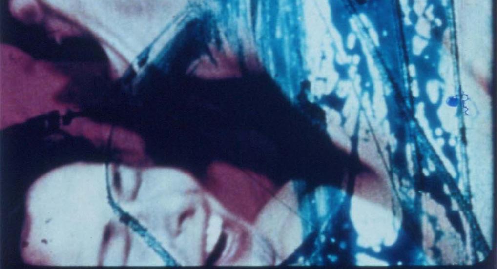 Fuses (Carolee Schneeman, 1965)