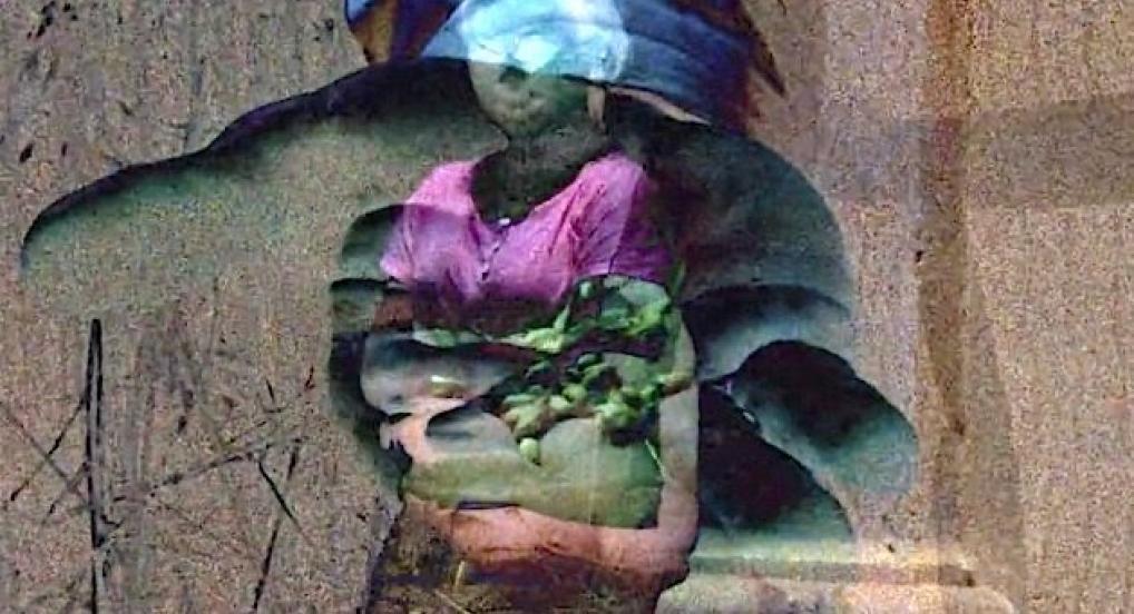 Garden Of Stone (Sasha Waters Freyer)