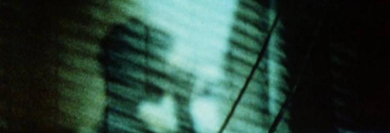 Convalescing (Barbara Meter, 2000)
