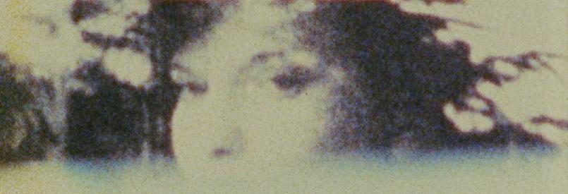 White Film (Joseph Bernard, 1978)