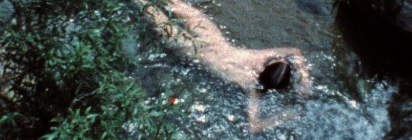 Creek (Ana Mendieta, 1974)