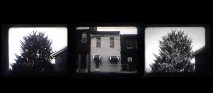 43 street Treelapse (Tara Merenda Nelson, 2009)