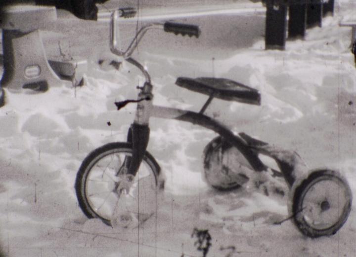 Snow (Tara Merenda Nelson, 2010)