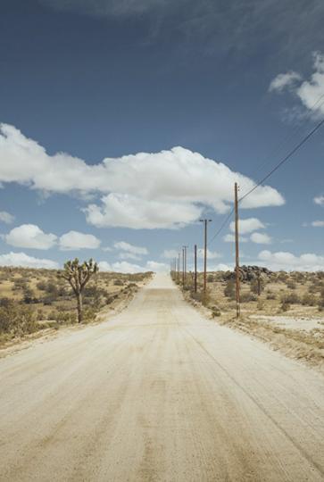 Fame in California by Alessio Di Zio