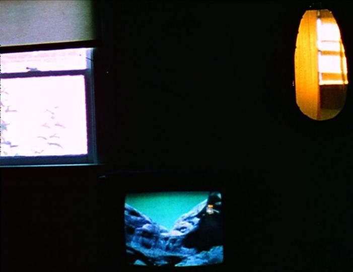Studies In Chronovision (Louis Hock, 1975)