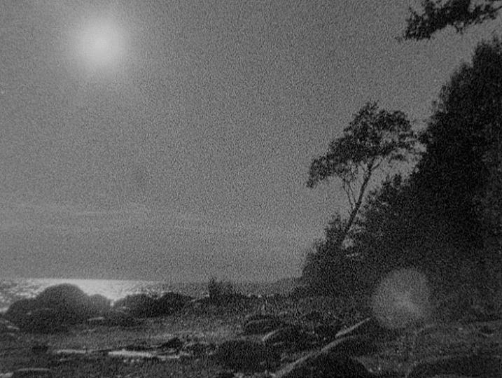 Moonlight People, film by Dmitri Frolov