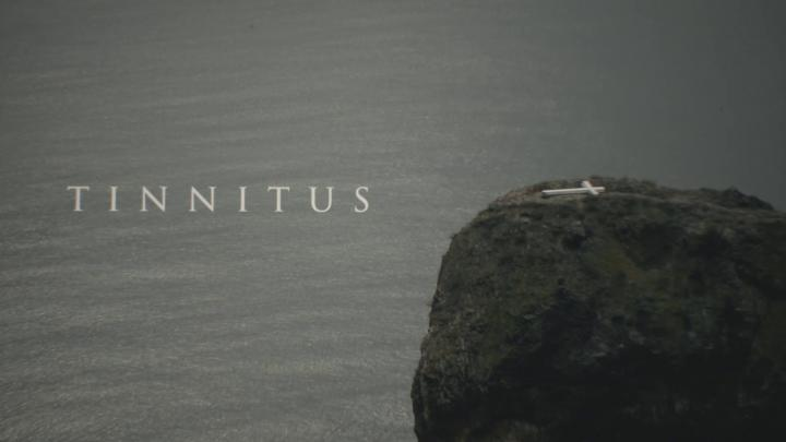 Tinnitus (Daniil Zinchenko, 2019)