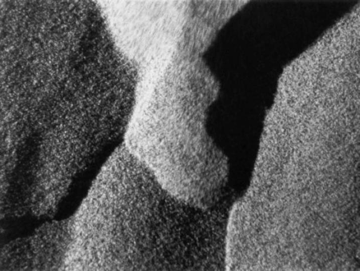 Alaya (Nathaniel Dorsky, 1976-87)