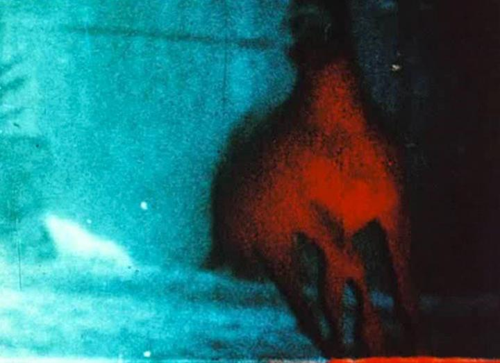 Berlin Horse (Malcolm LeGrice, 1970)