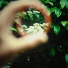 Im Park (Ute Aurand, 2008)