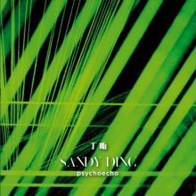 Sandy Ding - Psychoecho